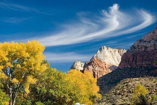 Stock Photo: 1566-369004 Autumn in Zion National Park. Utah, USA