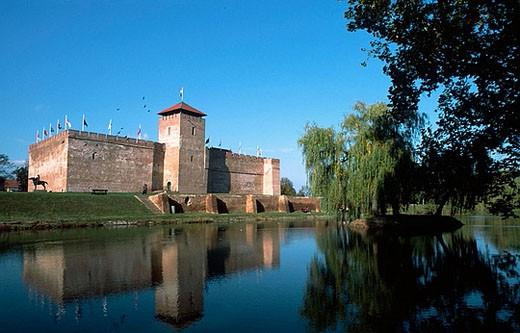 Castle of Gyula, Bekes County, Hungary : Stock Photo