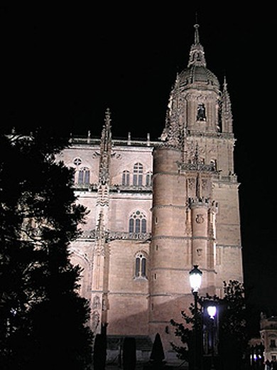 Tower of the new cathedral. Salamanca. Spain. : Stock Photo