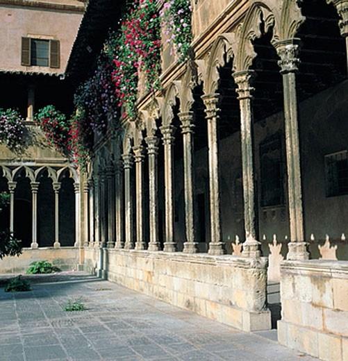 Cloister (14th century) of St. Francis church, Palma de Mallorca. Majorca, Balearic Islands, Spain : Stock Photo
