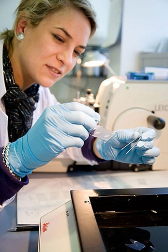Microtome, R+D department, biopharmaceutical lab, development and production of innovative drugs using adult stem cells, Cellerix, Grupo Genetrix, Madrid : Stock Photo