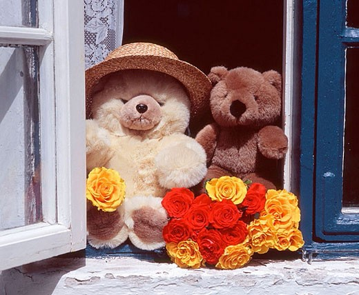 Stock Photo: 1566-377652 Teddys in window