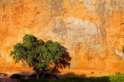 La Peña, Arribes del Duero Natural Park. Salamanca province. Castilla-Leon, Spain : Stock Photo