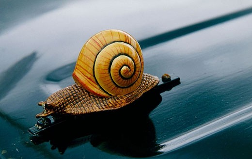 Stock Photo: 1566-384358 L´Escargot, Renault car bonnet decoration, Akaroa French Festival, Banks Peninsula, New Zealand