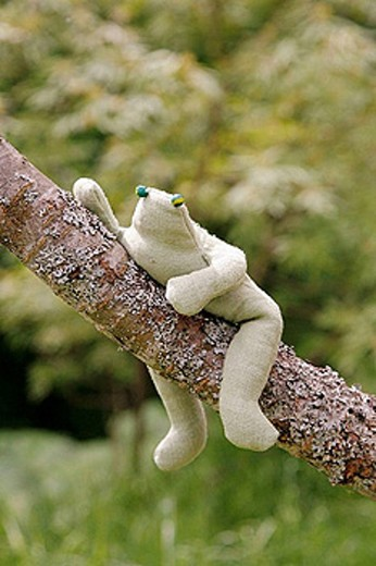 Frog made of cloth, in a tree : Stock Photo