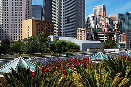 Stock Photo: 1566-390028 San Francisco. California, USA