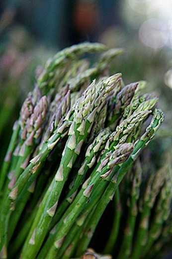 Stock Photo: 1566-391714 Detail of Asparagus at the market. Sicily.