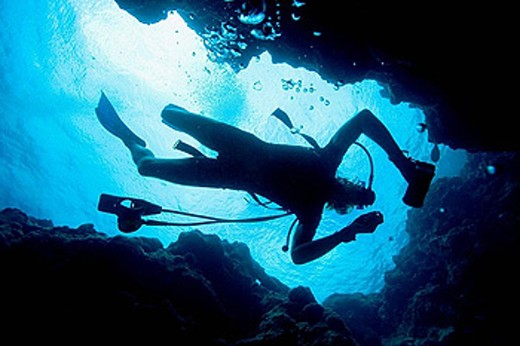 Stock Photo: 1566-393186 Scuba diver diving on reef