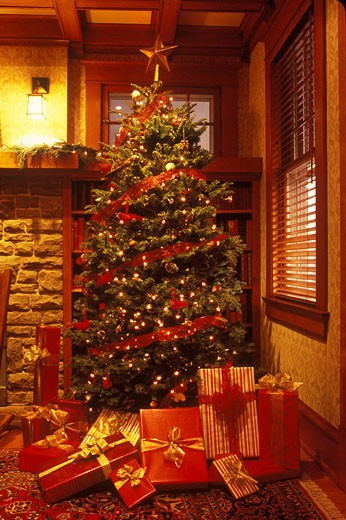 Living room interior with Christmas tree and presents : Stock Photo