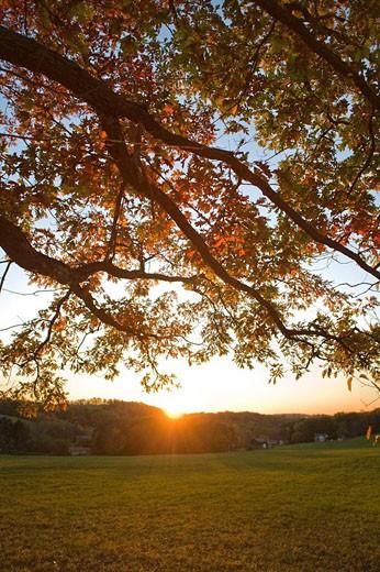 Stock Photo: 1566-400788 Autumn landscape
