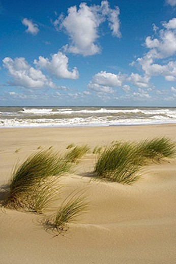 Winterton Beach. Norfolk. UK. September : Stock Photo