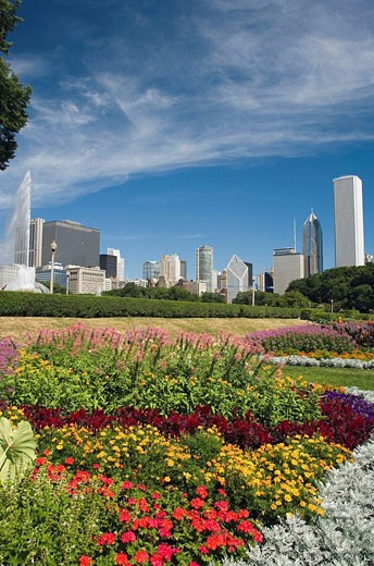 Stock Photo: 1566-408772 FLOWER BEDS, GRANT PARK, CHICAGO, ILLINOIS, USA