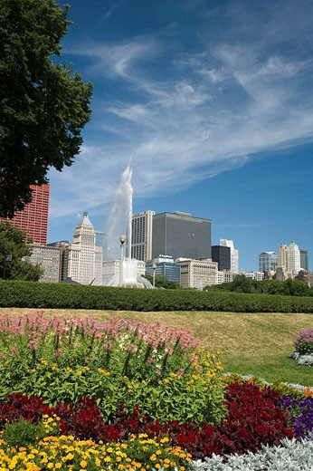 FLOWER BEDS, GRANT PARK, CHICAGO, ILLINOIS, USA : Stock Photo