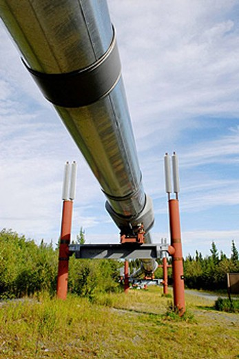 Trans Alaska Pipeline along Richardson Highway near Copper Center Alaska AK U S United States fuel oil black gold energy : Stock Photo