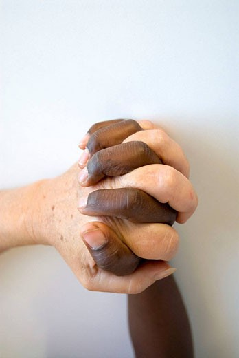 Interracial hands. : Stock Photo