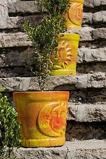 Stock Photo: 1566-412156 MEXICO-Guanajuato State-San Miguel De Allende: Terra Cotta Planters
