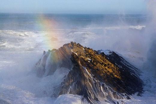 Wave crash, Shore Acres State Park. Oregon, USA : Stock Photo
