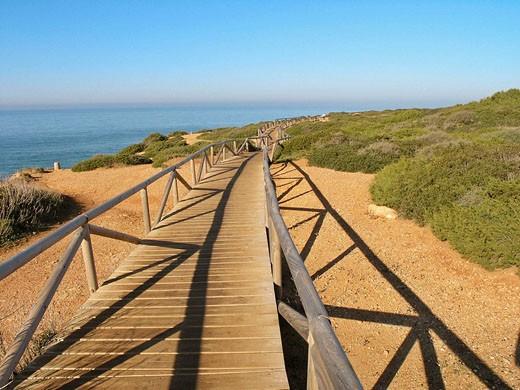 Boardwalk. Cabo Roche area, Conil. Cádiz province, Andalusia, Spain : Stock Photo