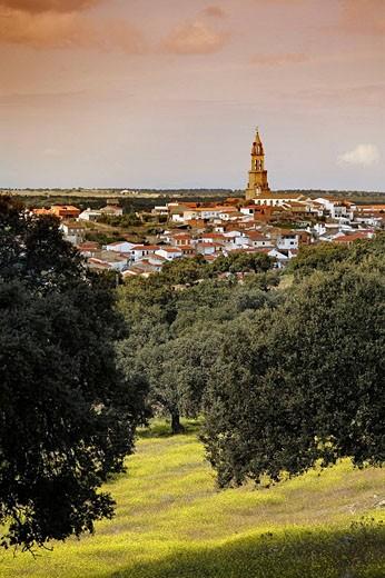 Valle de los Pedroches, Córdoba province, Spain : Stock Photo