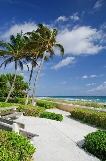 A West Palm Beach oceanside park along South Ocean Blvd., Florida, USA, 2008 : Stock Photo