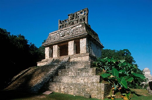 Temple of the Sun. Palenque. Mexico : Stock Photo