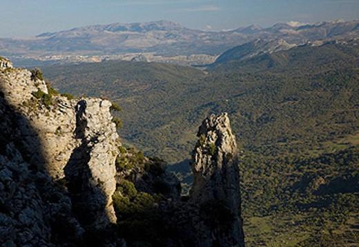 Stock Photo: 1566-440046 Ruta de los Pueblos Blancos. Sierra de Grazalema, Cadiz Province, Andalusia, Spain.