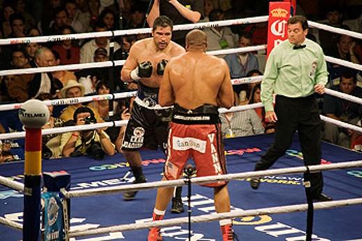 Stock Photo: 1566-445533 Boxing