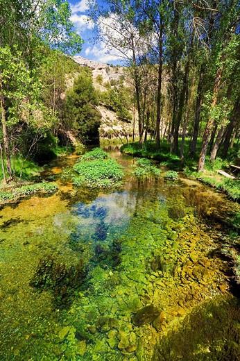 Stock Photo: 1566-448412 Abión river. Castile-Leon. Spain.