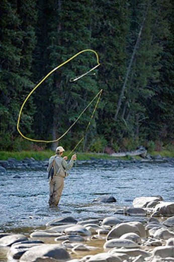 Man fly fishing on the Gallatin River, Near Big Sky, Montana, USA : Stock Photo