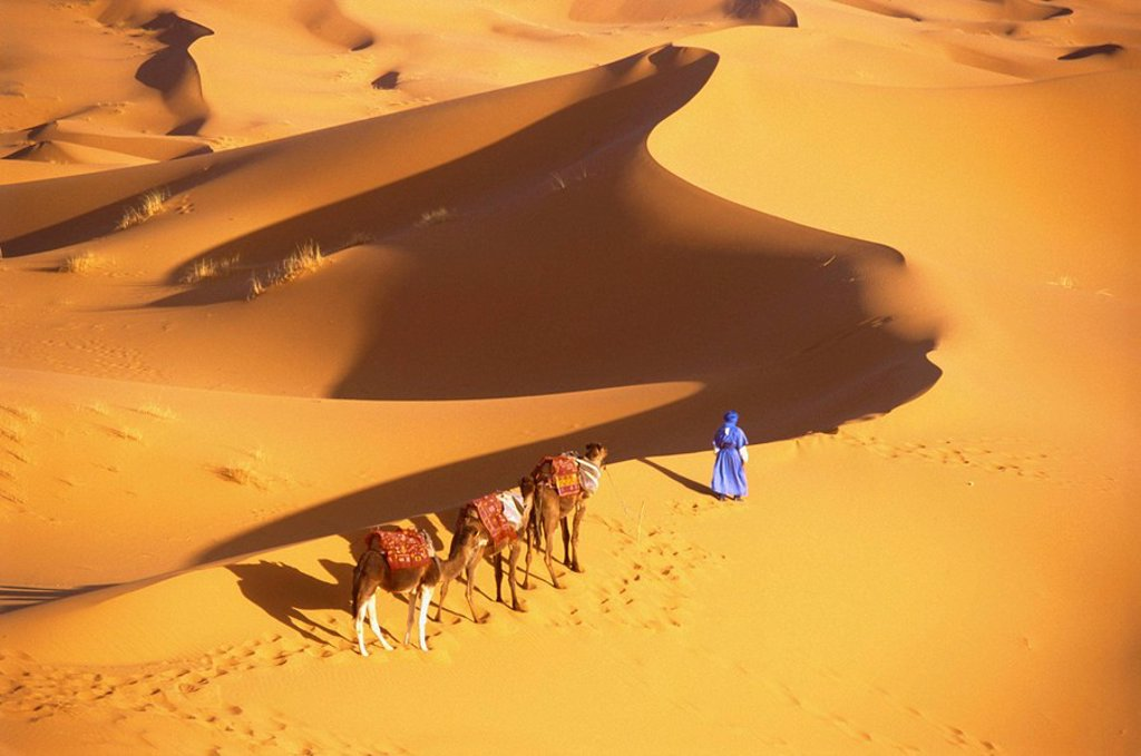 Erg Chebbi, Merzouga, Morocco : Stock Photo