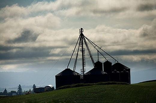 Stock Photo: 1566-451935 Farm, Washington, USA