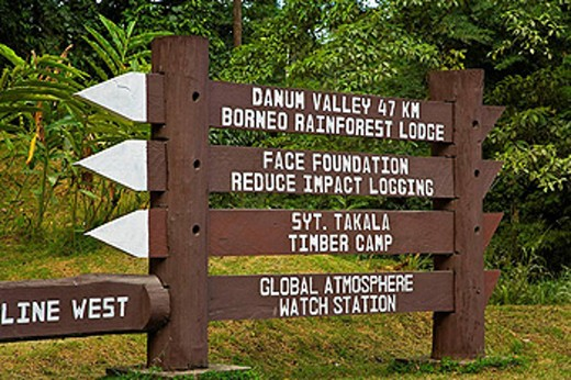Borneo Rainforest Lodge sign, Danum Valley Conservation Area. Sabah, Borneo, Malaysia : Stock Photo