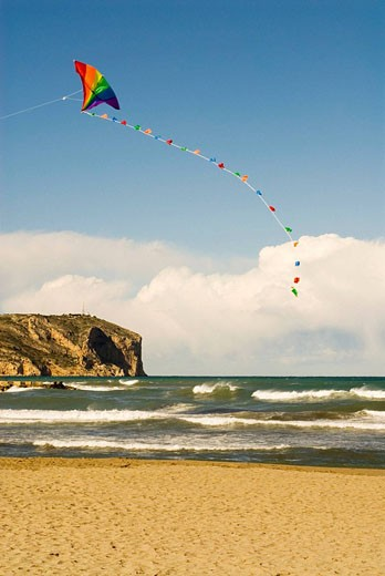 Kite on the beach : Stock Photo