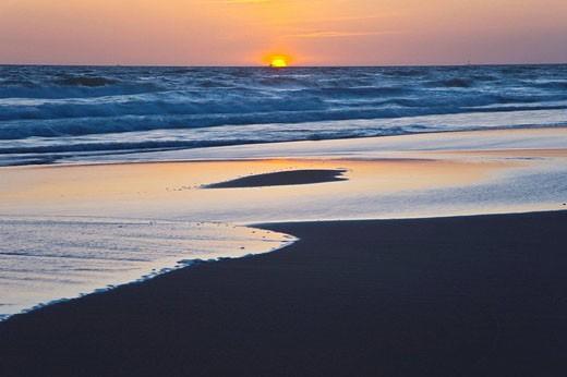 Stock Photo: 1566-455664 Doñana National Park. Huelva province, Andalucia, Spain