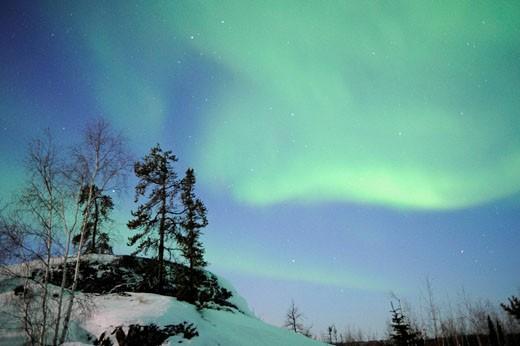 Stock Photo: 1566-456359 Northern lights (Aurora borealis) Northwest territories, March 2008, Canada