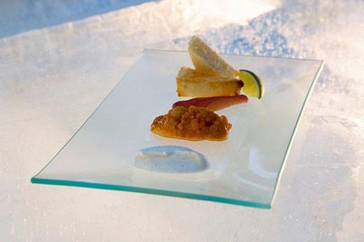 Swedish food on ice, Rading (fish) & Hjorton (orange berries). Jokkmokk, Northern Sweden : Stock Photo