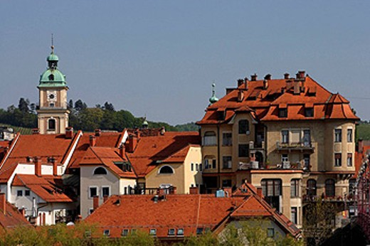 Maribor, old town, Cathedral Church of St John the Baptist, Slovenia : Stock Photo