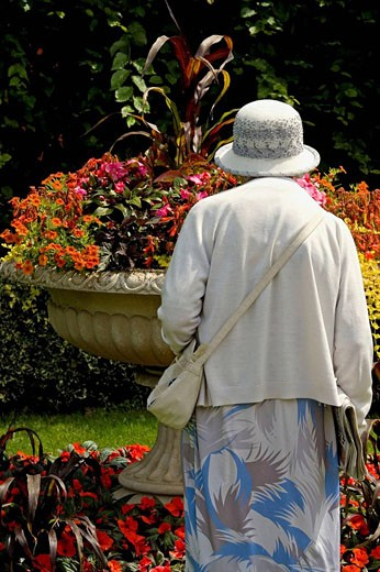 Lady admiring flowers Regents Park London Summer : Stock Photo