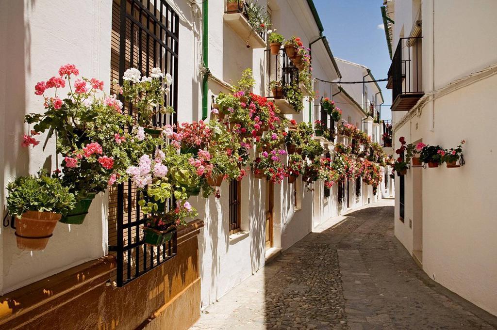 Street in the Villa district, Priego de Cordoba. Cordoba province, Andalucia, Spain : Stock Photo