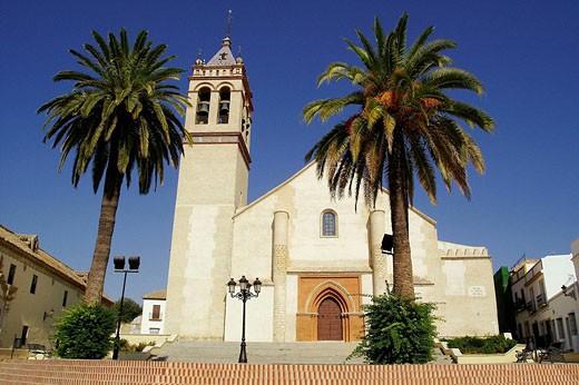 Marchena (Sevilla). España. Iglesia de San Juan Bautista en la Plaza del Cardenal Espínola del pueblo sevillano de Marchena : Stock Photo