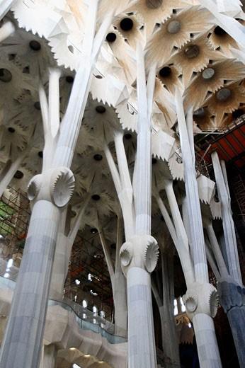 Columns of the Sagrada Familia temple by Gaudí, Barcelona. Catalonia, Spain : Stock Photo