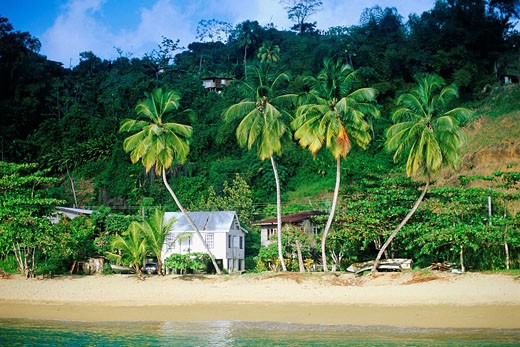 Stock Photo: 1566-469433 Beach hut, Parlatuvier, Trinidad and Tobago