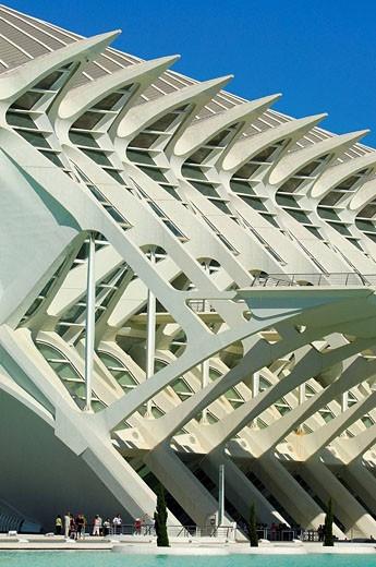 Príncipe Felipe museum of sciences, City of Arts and Sciences by S  Calatrava  Valencia, Comunidad Valenciana, Spain : Stock Photo