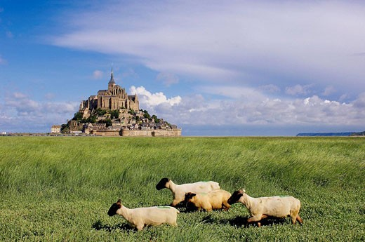 Mont-Saint-Michel Benedictine abbey  Normandy  France : Stock Photo