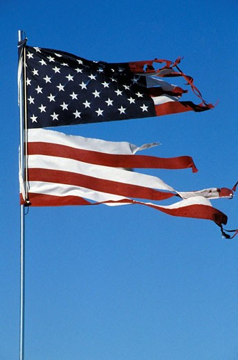 Torn and tattered American Flag : Stock Photo