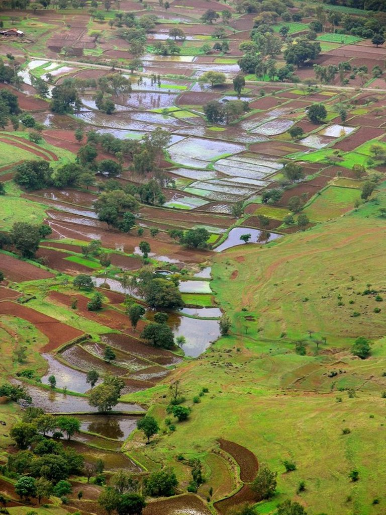Top view of an agricultural land and village, view from Potato point, Sinhangad, Pune, Maharasthra, India : Stock Photo