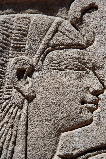 Stock Photo: 1566-485173 Portrait of Nefertari, Medinet Habu temple, Luxor, Egypt