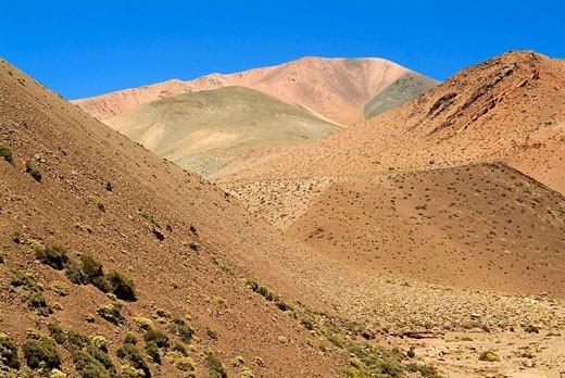 Reserva Provincial Las Vicuñas and the Laguna Brava, High Andes, La Rioja Province, Argentina : Stock Photo