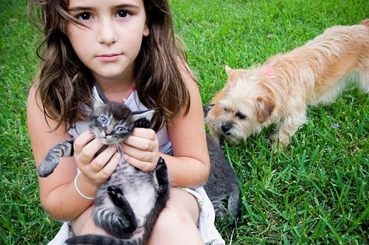 Little girl with kitten and puppy : Stock Photo