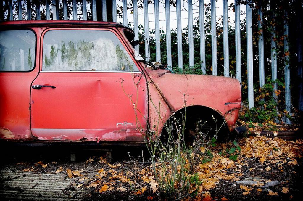 Stock Photo: 1566-493801 Mini Morris